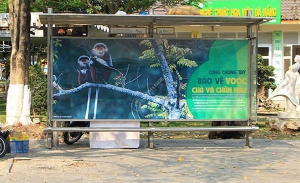quảng cáo nhà chờ xe buýt ở Đà Nẵng